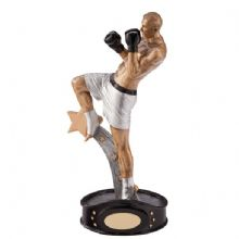 Ultimate Kickboxer Award